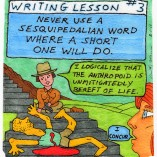 Writing Lesson #3
